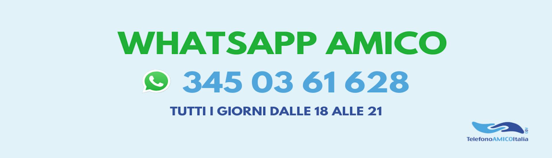 whatsapp amico